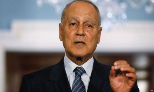 أبو الغيط: القضية الفلسطينية ضاعت وغياب الدولة الوطنية أدى إلى فتح شهية دول الجوار
