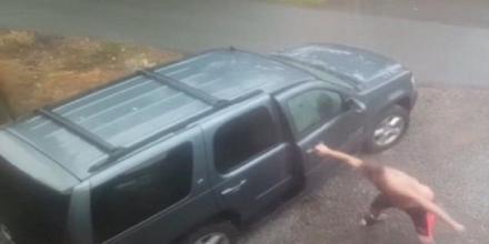 لحظات مرعبة لرجل عثر على دبين وأسد داخل سيارته (فيديو)