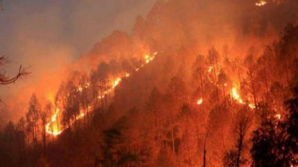 فرار المئات من السكان مع تواصل حرائق الغابات في استراليا