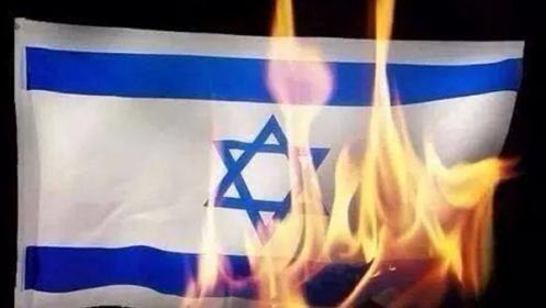 """منصور: الجمعة القادمة لـ""""حرق العلم الإسرائيلي"""" وليست لـ """"مولتوف"""""""