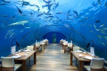 5 فنادق ساحرة تحت البحر.. أحدها بدولة عربية