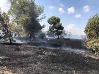 """اندلاع حريق في مستوطنة """"العين الثالثة"""" بفعل طائرة حارقة"""