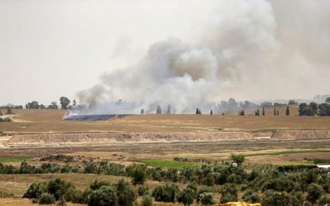 غلاف غزة : الطيور البرية انضمت للطائرات الورقية