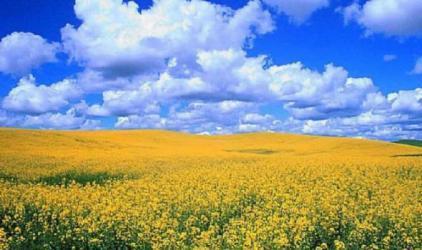 الطقس: جو حار نسبيا الى حار والحرارة أعلى من المعدل بـ4 درجات