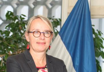 """سفيرة فرنسا لدى الاحتلال: """"يجب على تل ابيب عدم قتل الفلسطينيين في غزة"""""""