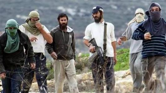 مستوطنون يقطعون أشجار كرمة جنوب بيت لحممستوطنون يقطعون أشجار كرمة جنوب بيت لحم