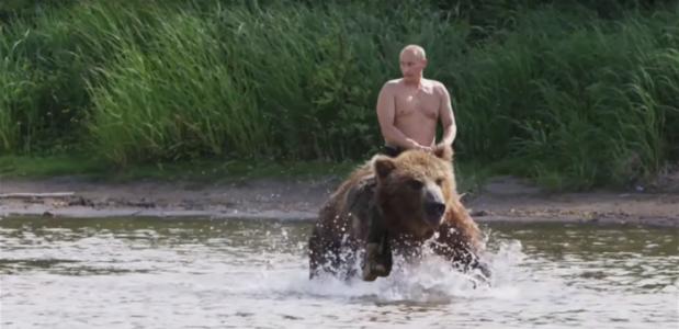 كيف سيتصرف الدب إذا ما صادف بوتين وجها لوجه؟ (فيديو)