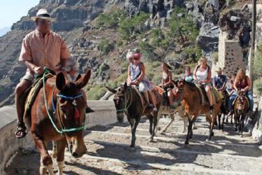 اليونان.. قرار بمنع السياح زائدي الوزن من ركوب الحمير !