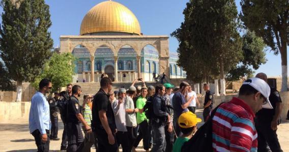 أكثر من 100 مستوطن يقتحمون المسجد الأقصى