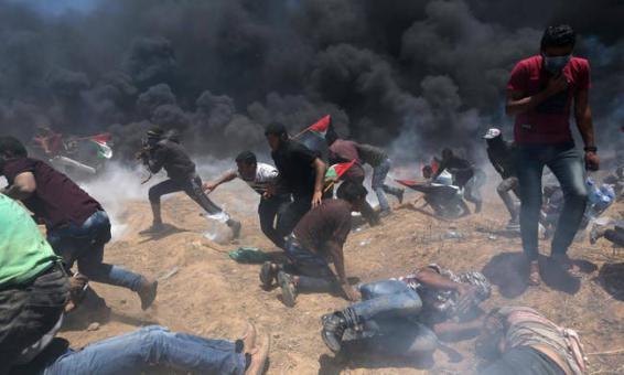 شرق قطاع غزة.. شهيد و37 إصابة برصاص جيش الاحتلال