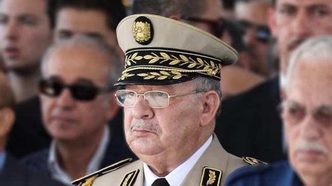 الجزائر.. الجيش يهدد الجنرالات المتقاعدين بمقاضاتهم