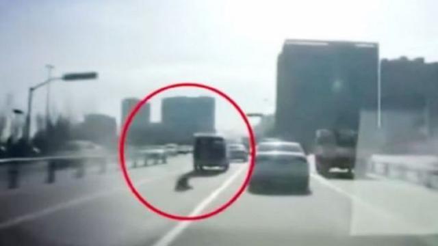 نجا بأعجوبة.. شاهد بالفيديو سقوط طفل من سيارة وسط طريق سريع