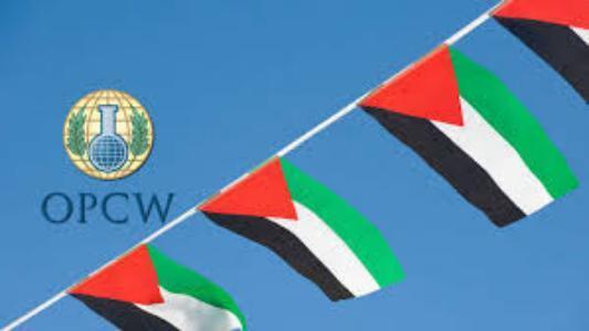 المالكي: فلسطين تسقط محاولات اقصائها من منظمة حظر الأسلحة