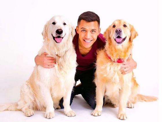 تعرف إلى أنواع الكلاب التي يمتلكها لاعبو كرة القدم (صور)