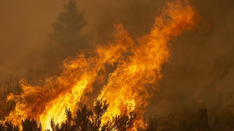 شاهد.. دخان حرائق الغابات الأمريكية يصل أوروبا