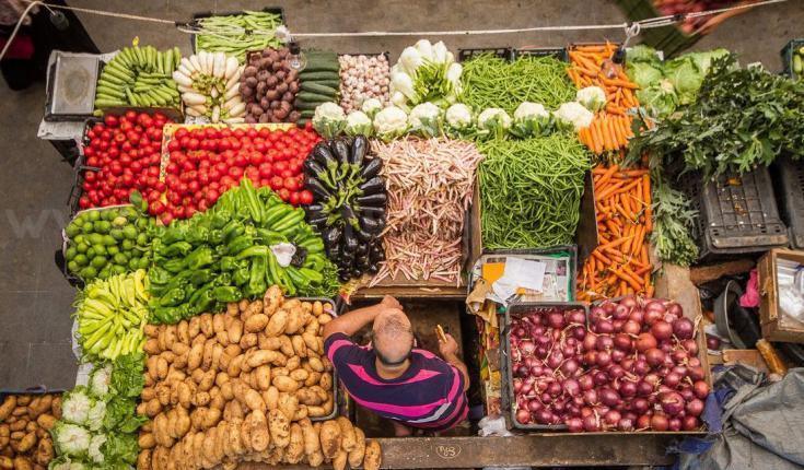 أسعار الخضروات والدجاج واللحوم في غزة اليوم