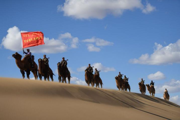 صور قطيع من الإبل في صحراء منطقة منغوليا لتشكيل منظر طبيعي جميل