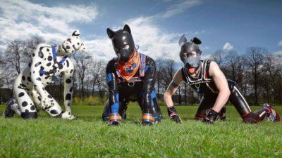 """سر ظاهرة """"الكلاب البشرية"""" بأوروبا.. عددهم وصل لـ 10 آلاف في بريطانيا فقط (شاهد)"""