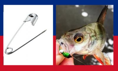 بدبوس فقط.. صناعة صنارة صيد سمك الشبوط أكثر فعالية في الصيد (صور)