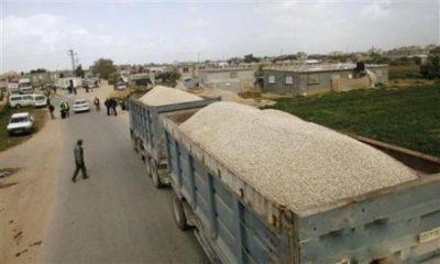 صحيفة عبرية: اتفاق بين إسرائيل والسلطة الفلسطينية لمضاعفة استيراد الحصمة