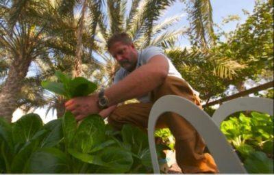 مهندس يأكل مما يزرع ويعيد تدوير كل شيء في حديقته (فيديو)
