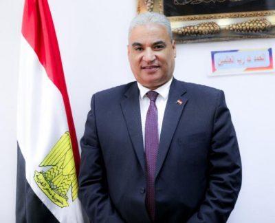 عودة مصر للسيادة الأفريقية